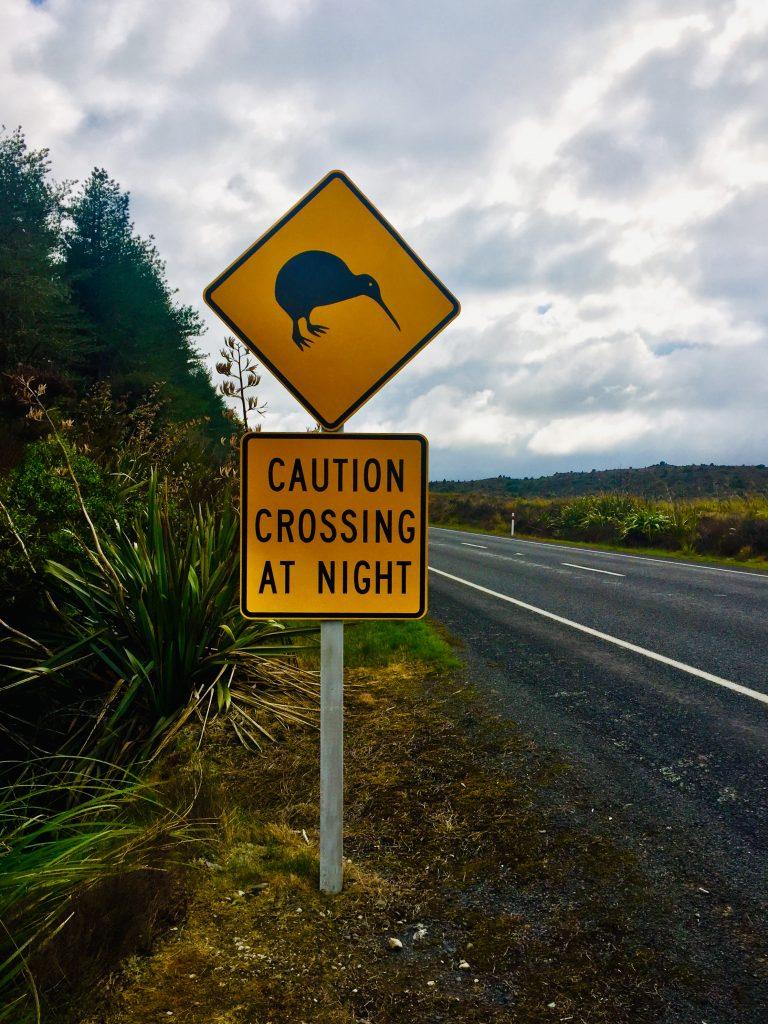 Nordinsel Neuseeland – Roadtrip von Wellington bis Auckland